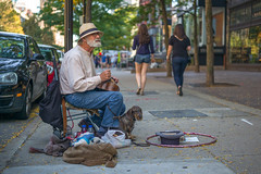 L3003429 (sswee38823) Tags: street leica city people dog boston photography 50mm outdoor newengland dachshund apo sidewalk summicron mackie 50 bostonma leicacamera streetmusician hurdygurdy boylstonstreet hurdy dachund summicron50mm gurdy hurdygurdyman leicam aposummicron leicamtype240 summicron50mmapo aposummicron50 leicaaposummicronm50mmf2asphfle aposummicronm1250asph leicaapo502 50aposummicron leica50apo
