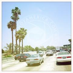 CALIFORNIA-246