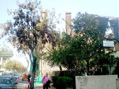 Casona Benjamín Montt