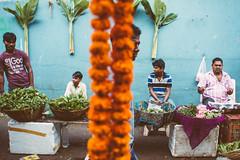 Mumbai, Nov. 14 (Melissa Lenoir (Mamazelle)) Tags: life street portrait india photography workshop mumbai photosderue maciejdakowiczphotography mamazelle melissalenoir