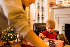 20141201_Christmas Decorating_IMG_0234 (Tom Cannon) Tags: louisvillephotographer kentuckyphotography kyphotography louisvillephotography kentuckykyphotographer thomascannonphotographyllc thomascannonphotography