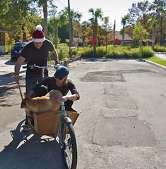 Loading up Katie the dog (METROFIETS) Tags: beach bike bicycle florida bikes sarasota beachbike cargobike beachcruiser enjoytheride bikelife metrofiets keepriding bikesrq palmtreesandbikes