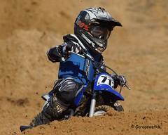 2014 AMA District 41 Motocross Race at Oak Hill MX (Garagewerks) Tags: sport rac