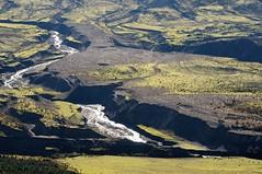 Life returning (YuriZhuck) Tags: usa mountain monument nature rock landscape volcano us washington unitedstates hiking trail helens wa desolation