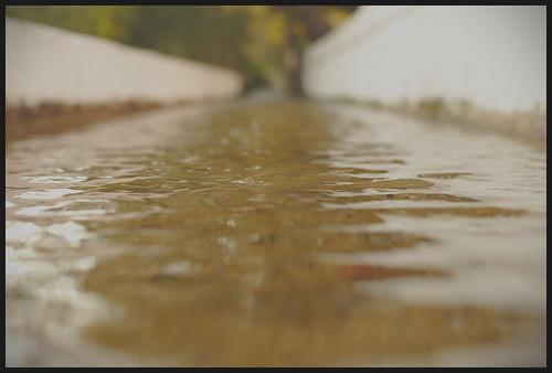 El río del silencio...
