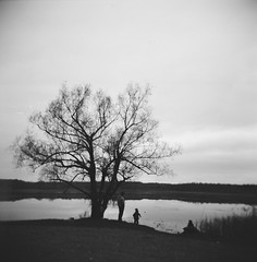 November in film (lindsay.crandall) Tags: blackandwhite bw adam holga pond joshua 120film mendonponds mendonpondspark