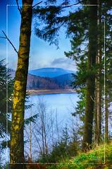 Der Echte Oberharz (RiesenFotos) Tags: deutschland herbst harz 2014 niedersachsen okertal okertalsperre oberharz riesenfotos derechteoberharz
