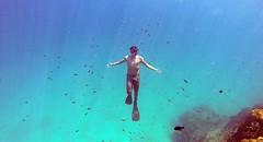 No fundo de Noronha (DeividGrassi) Tags: ocean sea brazil fish brasil mar foto snorkel br bra dive scuba snorkeling scubadive fernandodenoronha oceano noronha seasub euamonoronha