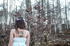 5 (myriam.lizarralde) Tags: pink flowers trees light woman bird girl angel forest butterfly book fly wings wolf young libelula bosque aralar