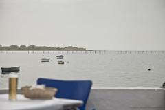 CDIZ ( franpalaciosfotografia ) Tags: puerto mar andaluca spain cdiz