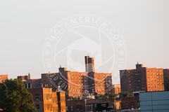 NEWYORK-331