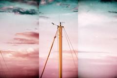 Untitled (marcus.greco) Tags: sea sky tree vintage boat barca mare colours cielo albero colori antico trama graffi