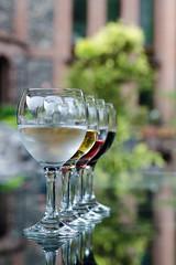 DSC_0481-2- (svetlanatsoy) Tags: house nature georgia relax 50mm restaurant nikon view wine bokeh tasting nikkor batumi nikkor50mm 50mmlens adjarian nikonphoto nikond5100