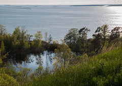 4Y1A7994 (Ninara) Tags: sea summer nature finland island helsinki kes vallisaari historiakohde sotilassaari