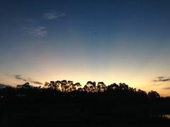 Say Bye to the Sun (jotaric photographer) Tags: sun sol entardecer iphone goiania jotaric