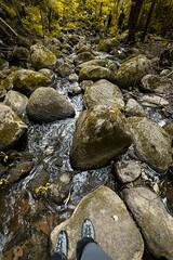 Outdoor pleasure (Andris Nikolajevs) Tags: travel forest trekking river relax rocks outdoor hiking weekend riverbed