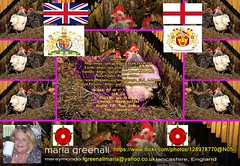 maria-greenall_(maraymondo1)-FO-F-(128978770@N05)-Flickr (ahamidmalik) Tags: england unitedkingdom name email lancashire iam joined retired currently occupation couk atyahoo femaleandtaken december2014 mariagreenall greenallmaria