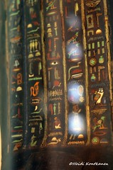 Glass inlay on the coffin (konde) Tags: wood glass ancient priest coffin hieroglyphs graecoroman ptolemaicperiod tunaelgebel petosiris mummycoffin