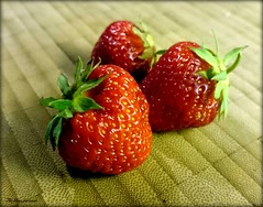 The first harvest. (Papa Razzi1) Tags: summer june harvest strawberries first 2016 7355 171365