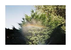 Somewhere in Normandy (Punkroyaltiger) Tags: film analogue contax kodakcolor 200 rainbow normandy