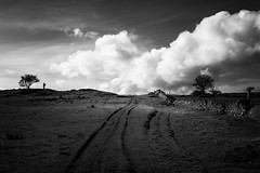 365A5087 (Nazgul 9) Tags: winter bw white black tree silhouette wales landscape south scene brecon beacons