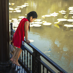 Explorar (Inmacor) Tags: travel viaje girl agua scene vietnam nia verano mirar estanque escena inmacor