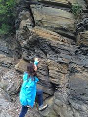 IMG_1530 (ArgyleMJH) Tags: geology taconic paleozoic ordovician cambrian deepkillformation argyle washingtoncounty newyork overthrust thrustfaulting fractures faulting mudstone allochthon loganscycle logansline giddingsbrookslice ucdavis