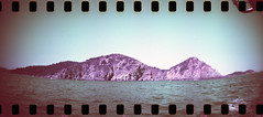 film (La fille renne) Tags: film lafillerenne analog 35mm sprocketrocket lomography lomochrome lomochromepurple lomochromepurplexr100400 purple panoramic landscape sea travel roadtrip cavalaire
