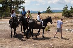 5D_IMG_6534 (Jeroen Kransen) Tags: bulgarije bulgaria    horse horseback equestrian horseriding paardrijden paardrit rodopen rhodopes