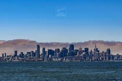 san francisco (Chen Luo) Tags: san francisco bay area d5 nikon nikkor city cloud sky sea blue building fog water california
