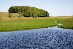 Lac de Bonnecombe, Lozre (lyli12) Tags: lac eau water paysage landscape languedocroussillon faune flore france nikon d7000