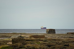 Coal Freighter Near Miss (Paul Hollins) Tags: aus australia bungareenorah newsouthwales norahhead nikond750 seascape soldiersbeach centralcoast
