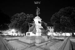 Monumento a Mazzini, Piazzale Mazzini, Padova (Davide Anselmi) Tags: mazzini biancoenero bianconero blackandwhite blackwhite bn bw giardino monumento notte padova piazzale piazzalemazzini statua davideanselmi 2016