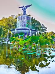 New York City (Themarrero) Tags: newyork nyc newyorkcity centralpark bethesdaterrace bethesdaterracefountain angelofwaters emmastebbins olympuse5 olympuszuikodigitaled1260mmf2840swd olmstedvaux