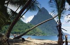 Petit Piton, St Lucia (Jim 592) Tags: volcano volcanic plug st lucia saint antilles caribbean island sea palm tree mountain tropical