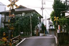 222 (HanPo Lin) Tags: film japan zeiss tokyo kodak contax carl  g1  100 f2 yoyogi 45mm planar ektar carlzeiss contaxg1  g45 kodakektar100 ektar100