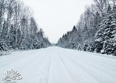 Brrr (Blinkofanaye) Tags: road trees winter snow canada ice pine forest quebec nation first backroads reservation manawan