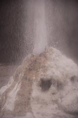 Lady Knox Geyser (Gabludlow) Tags: newzealand cloud water rotorua steam northisland geyser thermal waiotapu ladyknoxgeyser roturua