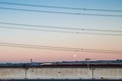 we move (DanMasa) Tags: panorama train landscape alba alta treno linea velocit ferrovia cavi tav ferroviaria tensione