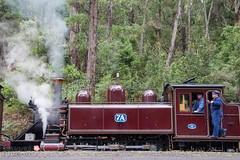 Puffing Billy at Emerald Lake Station (jennyriordan545) Tags: lake station billy puffing emeral