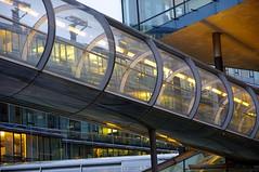 Nord LB (rckem) Tags: licht tube hannover architektur dmmerung brcke glas verbindung rhre niedersachsen nordlb nordlbhannover