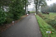 IMG_5244 (De Herfstloop Twente) Tags: de running ac enschede twente hardlopen rudie 2014 boekelo lonneker fotograaf tion glanerbrug olthof usselo herfstloop