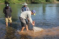 Benthic Sampling in Laos