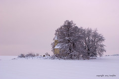 (tozofoto) Tags: travel trees winter snow travelling ice church colors canon landscape lights europe hungary shadows religion cementery zala tozofoto
