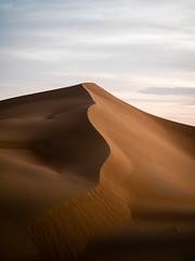 Rub al Khali, dune (Steffen Faradi) Tags: sky nature ecology sand scenery dubai skies desert dunes dune natur middleeast himmel abudhabi land environment environmentalism unitedarabemirates dne wste ecosystem umwelt duene hamim rubalkhali vereinigtearabischeemirate rubalchali