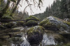river rocks (Nullality.Nu) Tags: cold west nature water 35mm river lens flow prime coast is washington moss still rocks aqua soft mt baker northwest bokeh south twin fork running falls best rapids sharp vegetation fujifilm fixed flowing wilderness grime delicate pnw frio snowqualmie x100 fixd
