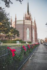 Memorial Park (Visit Natchez, MS) Tags: park christmas decorations mississippi memorial picnic natchez natchezms christmastreelighting2014