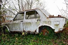 fiat 128 (riccardo nassisi) Tags: auto car pc rust fiat rusty collection wreck piacenza collezione relitto politi abbandoned abbandonata