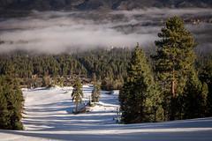 A Surreal Ski Day