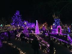 Van Dusen Gardens Festival of Lights